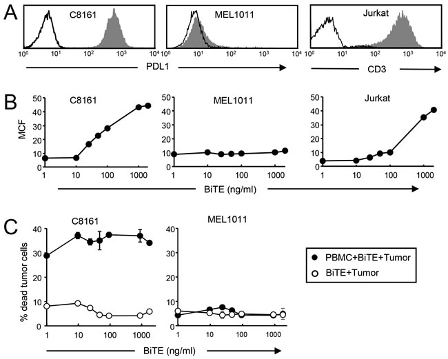 Low levels of bound BiTE are sufficient for maximal killing of PDL1