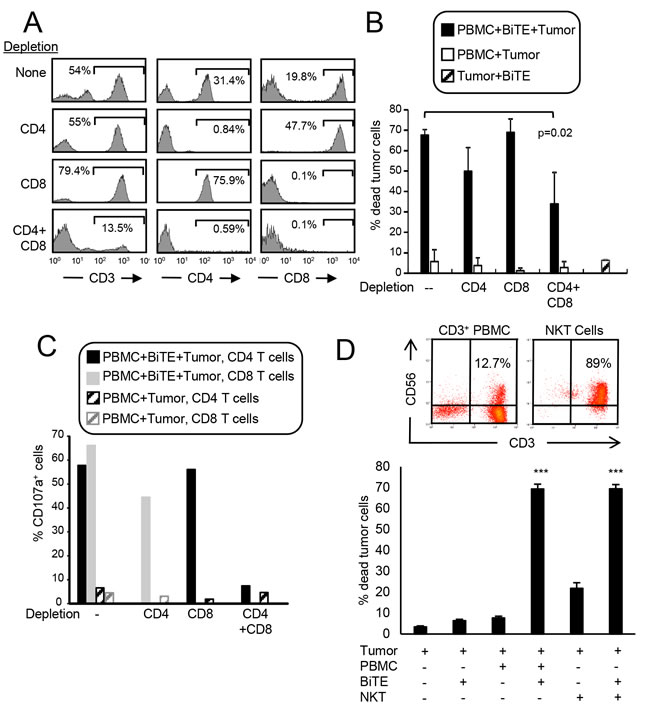 CD3xPDL1 BiTE activates both CD4