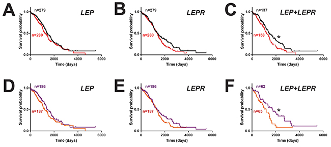 Impact of leptin/LEPR expression on ovarian cancer patient survival.