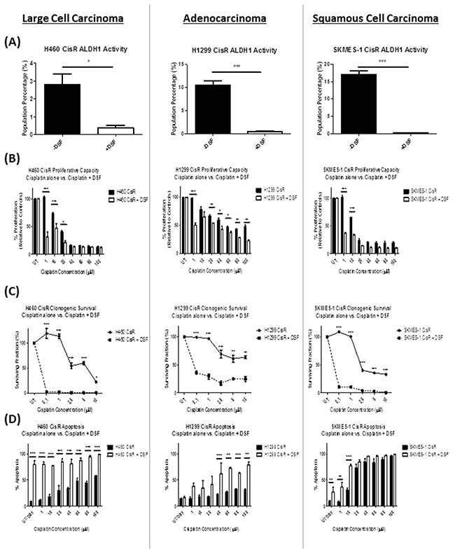 Repurposing of the drug, Disulfiram, re-sensitizes cisplatin resistant NSCLC cells to the cytotoxic effects of cisplatin.