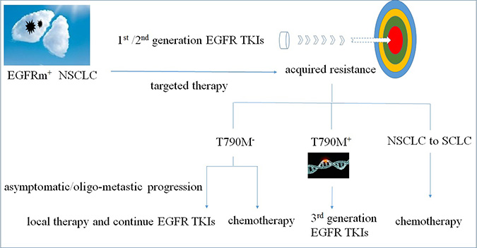Treatment options for NSCLC patients with EGFR TKI acquired resistance.