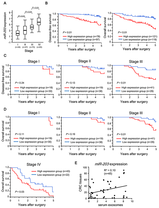 Prognostic significance of exosomal miR-203 expression in serum in CRC patients.
