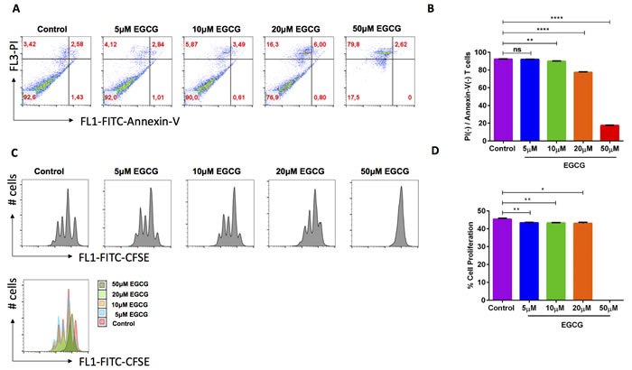 EGCG significantly enhanced cell death and decreased cell proliferation of murine CD4