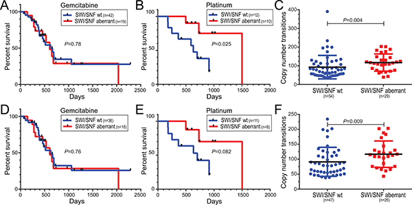 Human pancreatic ductal adenocarcinomas with SWI/SNF aberrations exhibit responsiveness to platinum-based treatment regimens and increased DNA copy number transitions.