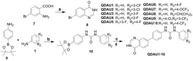 Scheme 2: Synthesis of quinazolinone diaryl urea derivatives QDAU1-10