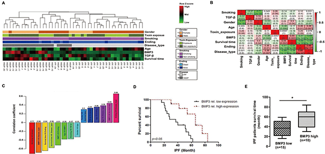 High BMP3 expression predicted better survival rate in IIP patients.