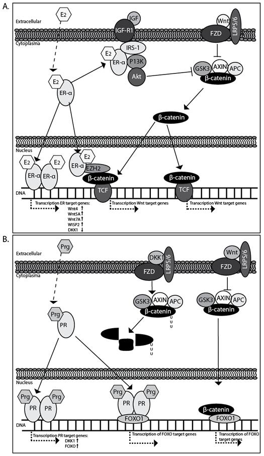 Figure 2.ai