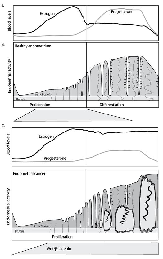 Figure 3.ai