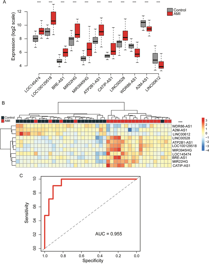 Identification of differentially expressed lncRNAs between AMI patients and healthy samples in the discovery cohort.