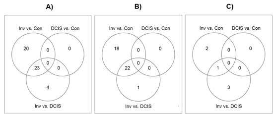Venn diagrams showing the overlap of differentially expressed microRNAs identified from each of the three comparisons: invasive group versus control group, invasive group versus DCIS group, and DCIS group versus control group, respectively.