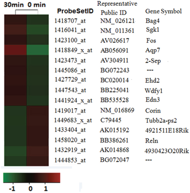 mRNA profiling analysis reveals itch-related altered genes.
