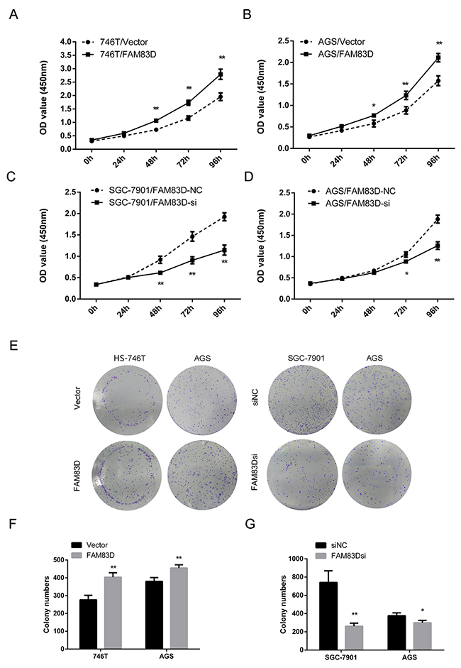 Ectopic expression of FAM83D promotes GC cell proliferation.