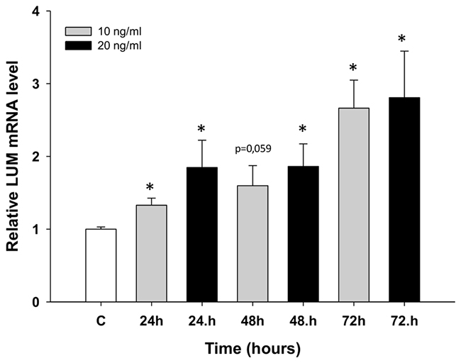 Expression analysis (Q-PCR) of the LUM gene in the W1 cell line after TOP treatment.