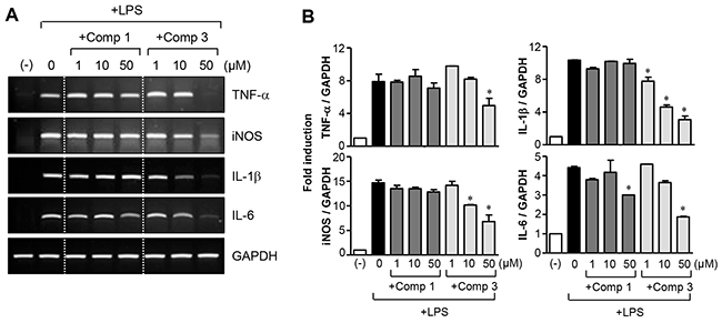 Effects of comp 1 and 3 on mRNA expression of proinflammatory molecules.