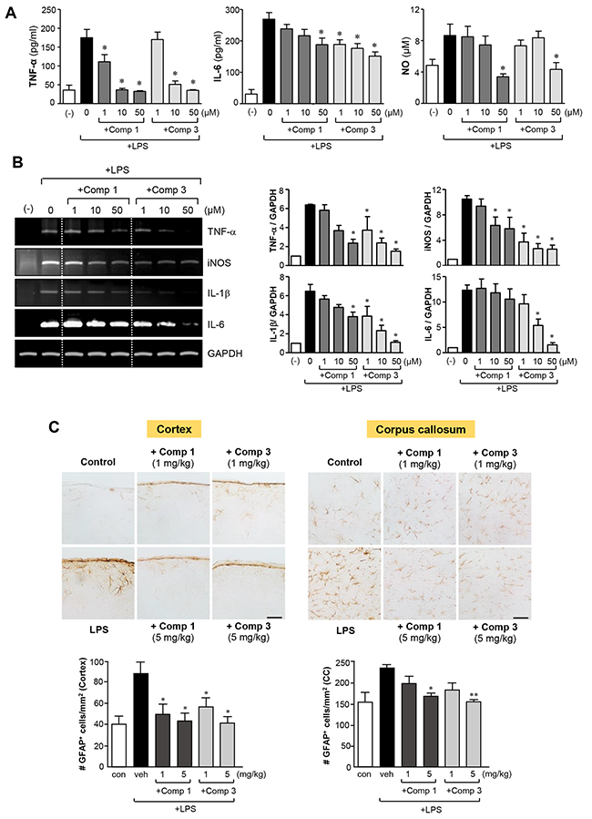 Anti-inflammatory effects of comp 1 and 3 in LPS-stimulated primary astrocytes, and inhibition of astrogliosis in septic mouse brains.