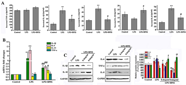 Effects of BPIS on LPS induced inflammation.