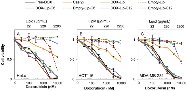 Dose-dependent effect of liposomal doxorubicin on cell viability.