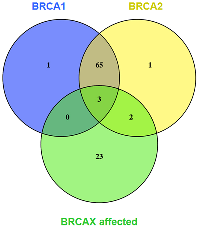 Venn diagram of significantly and differentially expressed transcripts compared with BRCAX unaffected individuals.