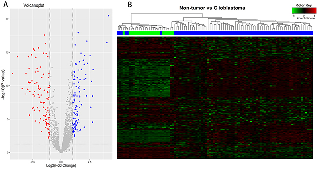 Differentially expressed lncRNAs (DELs) analysis between glioblastomas and non-tumor controls.