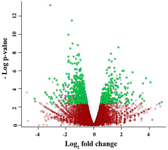 Volcano plot of the gene expression data.