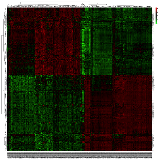 The heatmap revealed the overlapped differentially expressed genes between tumor and normal samples.
