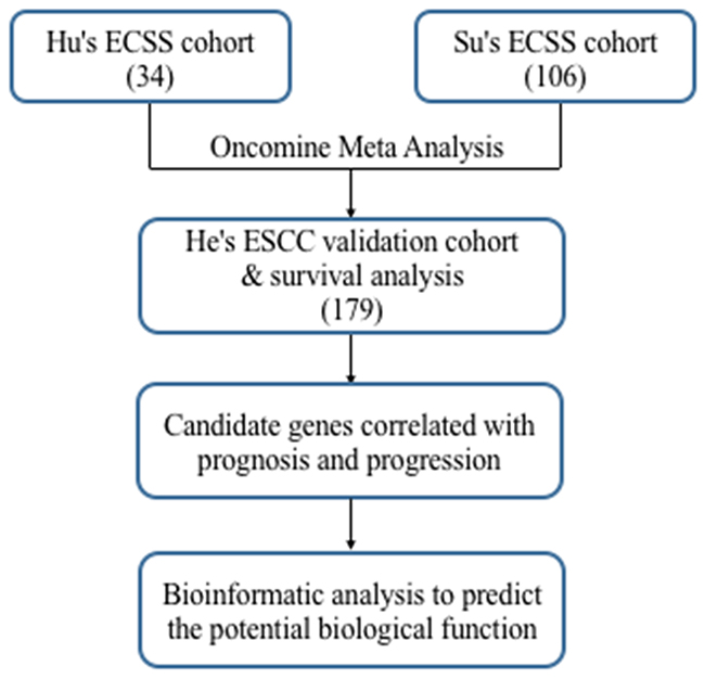 Flowchart for comprehensive analysis of the expression profiles and identification of the candidate genes correlated with progression and prognosis.