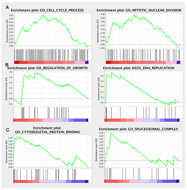 GSEA enrichment analysis of the co-expressed genes.