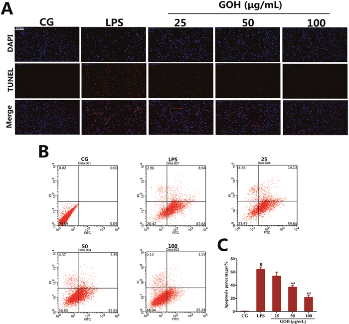 Effects of GOH on cell apoptosis induced by LPS in RAW 264. 7 cells.
