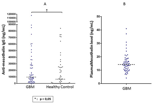 Detection of mesothelin-specific circulating IgG as well as shed mesothelin protein in plasma of GBM patients.