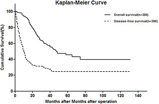 Kaplan-meier curve showing OS and DFS.