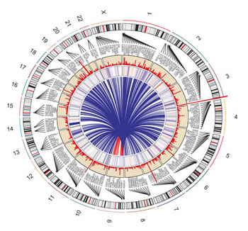 Circos plot depicting the influence of nicotine exposure in normal epithelial cells.
