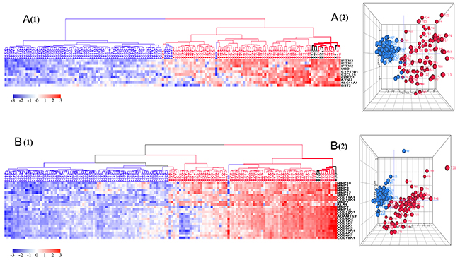 HCA and PCA of genes pertaining to the six most significantly upregulated biological processes in tumors vs. normal tissues.