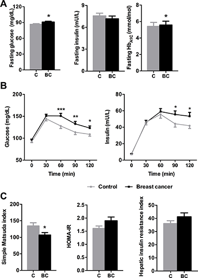 Glucose/insulin metabolism parameters in control and breast cancer patients.