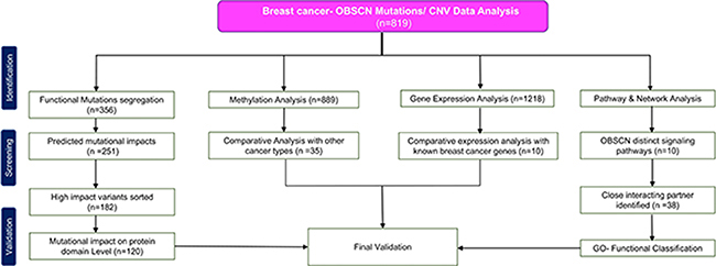 Flow diagram summarizing selection and validation of the present meta-analysis on OBSCN gene.