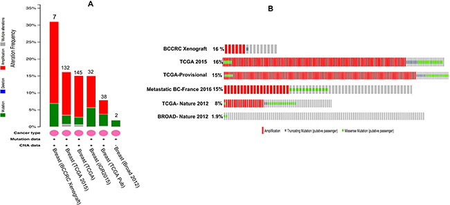 Overall OBSCN gene mutations across various breast cancer projects data of cBioportal.