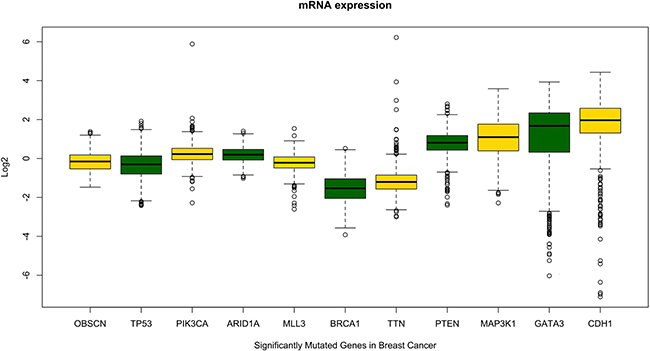 Comparative evaluation of OBSCN gene expression pattern with other known breast cancer genes shows OBSCN gene has similar expression pattern with some of the known breast cancer driver genes.