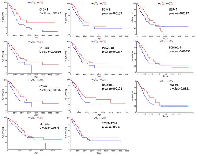 Kaplan-Meier survival curves using TCGA data validate the prognostic value of genes overexpressed in acinar subtype lung AC.