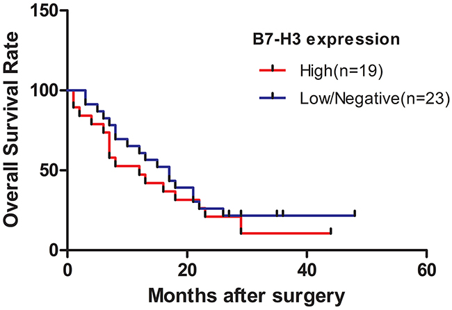 Survival curve of patients with pancreatic cancer stratified according to the expression levels of B7-H3.