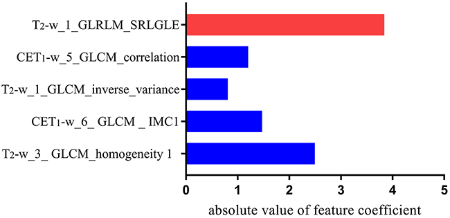 Histogram shows the role of individual textural features that contribute to the developed radiomics signature