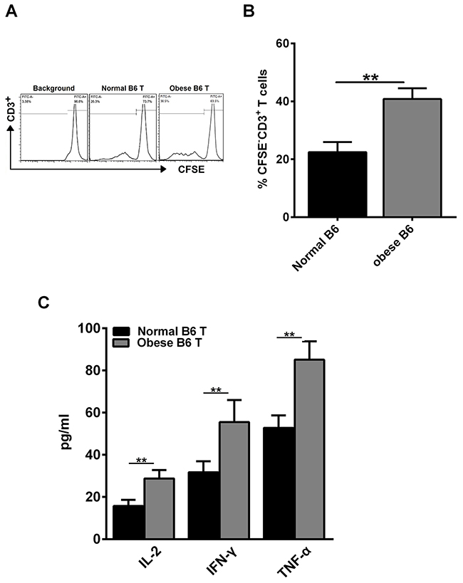 Obesity enhances alloreactive T cell response and CD3+ T cell proliferation in vitro.