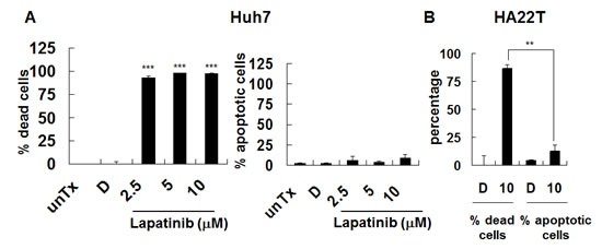 Induction of non-apoptotic cell death by lapatinib in HCC cells.