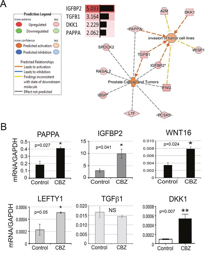 Secretory proteins upregulated by cabozantinib treatment.