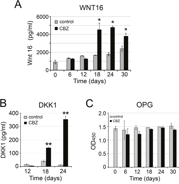 Effect of cabozantinib on WNT16, DKK1, and OPG expression.
