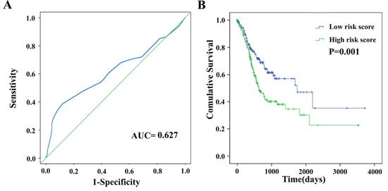 The four differentially expressed lncRNA signature of gastric cancer for the outcome.
