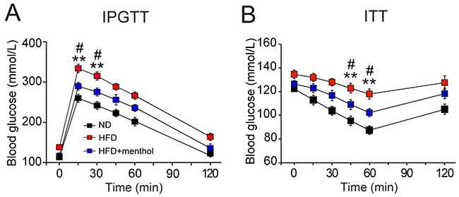 Effects of dietary menthol on glucose metabolism in HFD-induced obesity mice.