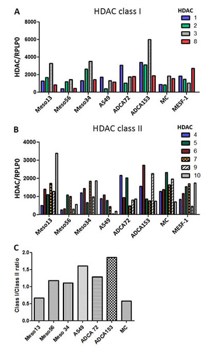 Expression of HDAC in MPM, lung ADCA and mesothelial cells (MC).