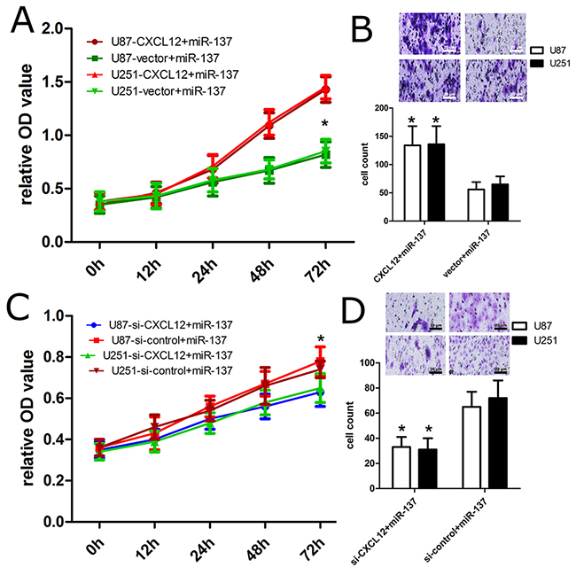 CXCL12 affects the effect of miR-137 on cell proliferation and invasion.
