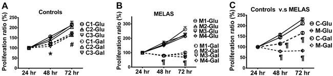 Decrease in cell proliferation of MELAS fibroblasts.