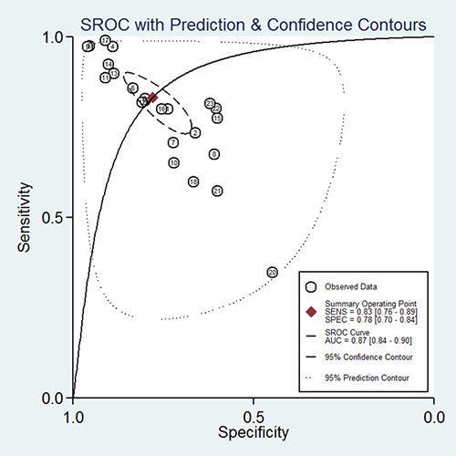 The SROC curve of PVT1 for the diagnosis of various cancers in tissue.