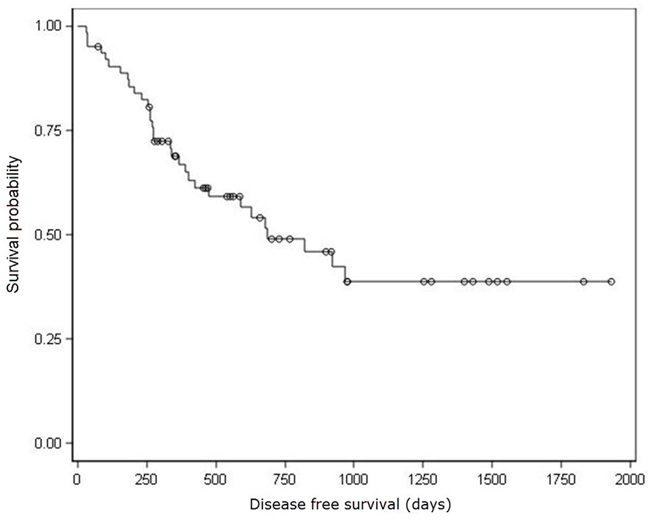 Kaplan–Meier analysis of disease free survival.